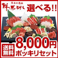 8,000円ポッキリ 馬肉の日特別企画です