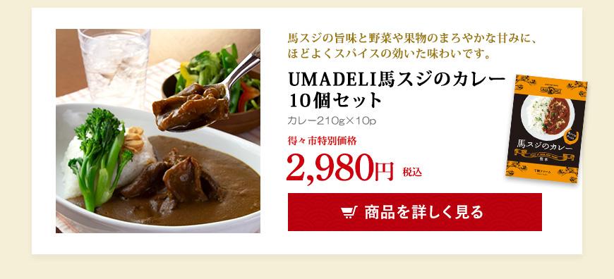 UMADELI馬スジのカレー10個セット
